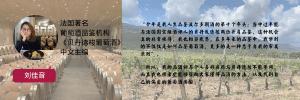 CV LIU Jiayin 1200x400